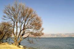 Тихое озеро Erhai стоковая фотография