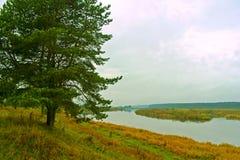 Тихое утро осени на реке Tvertsa Стоковые Изображения RF