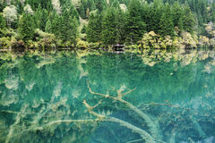 Тихое ясное озеро стоковые изображения rf