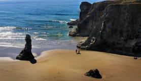 Тихоокеанское побережье скалы Орегона, моря Стоковые Изображения