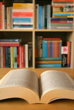 тихо читающ Стоковая Фотография RF