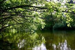 тишь озера Стоковые Изображения RF