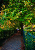 тишь переулка Стоковые Фото