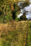 тишь тропы сельской местности стоковое фото
