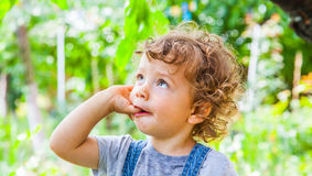 1-ти летний портрет ребёнка Стоковое Изображение RF