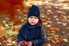 2-ти летний мальчик в парке осени стоковое фото