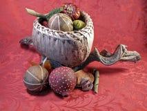тканье красного цвета gourds Стоковые Фотографии RF