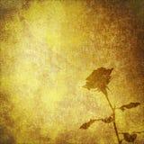 тканье старого пергамента цветка предпосылки розовое Стоковые Изображения