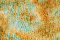 тканье шарфа предпосылки связанное крупным планом яркое Стоковая Фотография RF