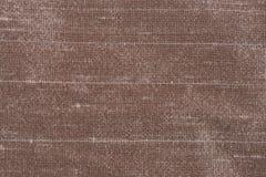 Ткань Брайна стоковое фото