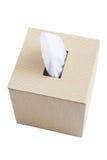 ткань коробки готовая Стоковые Фотографии RF