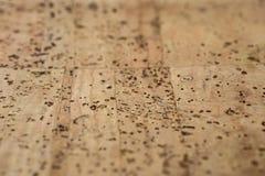 Ткань пробочки кожаная стоковые изображения rf