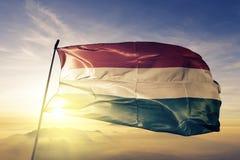 Ткань ткани ткани национального флага Венгрии развевая на верхней части иллюстрация штока