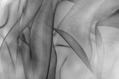 Ткань Organza Стоковые Изображения