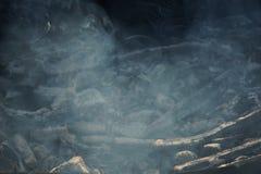 Тлеющие угли дыма, который нужно зажарить на улице стоковое изображение rf