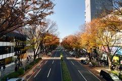 ТОКИО - 24-ОЕ НОЯБРЯ: Люди на улице Omotesando Стоковые Фото