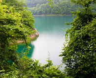 токио озера мирное Стоковое Изображение