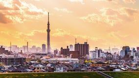 Токио Япония и Mt fuji видеоматериал