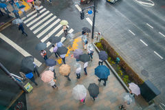 ТОКИО, ЯПОНИЯ 28-ОЕ ИЮНЯ - 2017: Вид с воздуха неопознанных людей под зонтиками на улице скрещивания зебры в Jimbocho Стоковое фото RF
