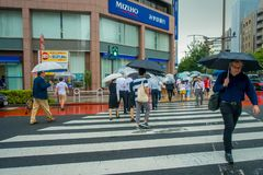ТОКИО, ЯПОНИЯ 28-ОЕ ИЮНЯ - 2017: Неопознанные люди под зонтиками на улице скрещивания зебры в обнаруженном местонахождение районе Стоковая Фотография RF
