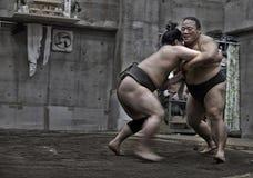 ТОКИО, ЯПОНИЯ - 18-ое мая 2016: Японская тренировка борца sumo в их стойле в токио 18-ого мая 2016 Стоковые Изображения