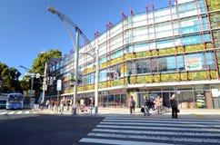 Токио, Япония - 22-ое ноября 2013: Посетители наслаждаются красочными деревьями Стоковое Изображение