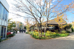 Токио, Япония - 28-ое ноября 2013: Японский народ столовой посещения на районе Daikanyama Стоковые Фото