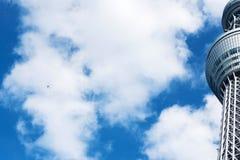 ТОКИО, ЯПОНИЯ - 31-ОЕ ОКТЯБРЯ 2017: Взгляд ` башни ТВ небесное дерево ` токио Скопируйте космос для текста вертикально Нижний взг стоковые изображения