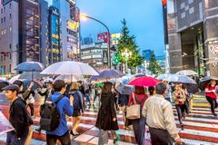 Токио, Япония - 28-ое сентября 2018 - большая группа людей пересекая дорогу с зонтиками в городском Токио в позднем вечере, Япони стоковое фото rf