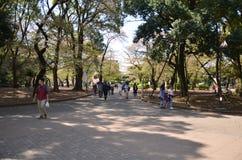 Токио Япония парка Ueno Стоковая Фотография RF