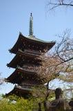 Токио Япония парка Ueno Стоковая Фотография