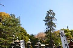 Токио Япония парка Ueno Стоковые Изображения RF