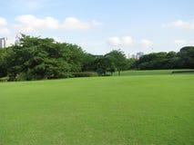 токио Central Park Стоковая Фотография
