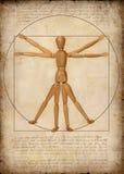 толкование человека самомоднейшее vitruvian бесплатная иллюстрация