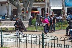 Толпа в парке стоковое изображение