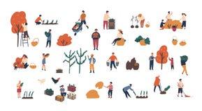 Толпа крошечных людей собирая урожаи или сезонная пачка сбора людей и женщин собирая зрелые плодоовощи, ягоды и иллюстрация штока