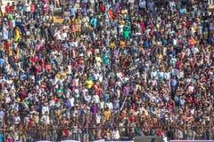 Толпа сверчка