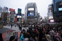 Толпы людей идя поперек на улицу в Токио, Японию Shibuya известную пересекая стоковое фото rf