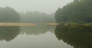 Толстый белый туман сток-видео