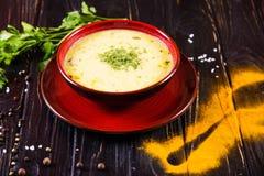 Толстый горячий суп стоковая фотография rf