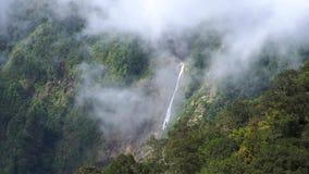 Толстый туман и дым леса двигая в гору с водопадом акции видеоматериалы
