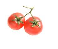 2 томата на изолированной ветви. Томаты tomatoesTwo вишни на изолированной ветви. Стоковые Фотографии RF