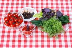 Томатный соус, зеленые цвета Стоковое Изображение RF