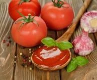Томатный соус с базиликом стоковое фото