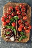 Томатный соус с базиликом стоковые изображения
