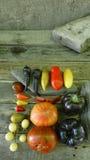 5 томатов перцев Стоковое Фото