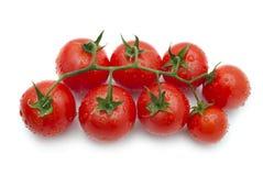 томаты вишни белые Стоковое Фото