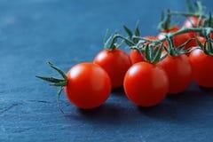 томаты вишни ветви свежие зрелые Стоковое Изображение