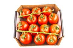 Томаты вишни в коробке на белой изолированной предпосылке Стоковое Изображение