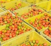 Томаты вишни в пластичных корзинах Стоковое Фото